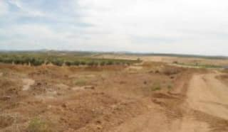 Foto 1 Lugar Paraje Cabeza Rubia, Sn, Bajo, 6207, Aceuchal (Badajoz)
