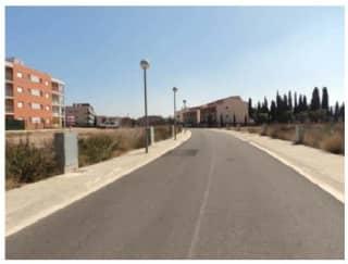 Foto 2 Calle Professor Esteve Galvez, 68, Bajo, 43870, Amposta (Tarragona)