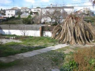Foto 2 Avenida Sant Miquel / Cantona C/freixes Nº1 Bis, 15, Bajo, 8734, Olèrdola (Barcelona)