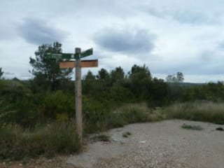Foto 4 Calle Sur, 10, Bajo Parcela 116, 43893, Altafulla (Tarragona)
