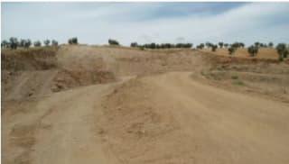 Foto 13 Lugar Paraje Cabeza Rubia, Sn, Bajo, 6207, Aceuchal (Badajoz)
