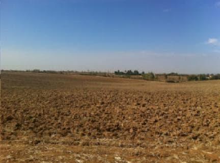 Venta de terrenos en Casar de Escalona