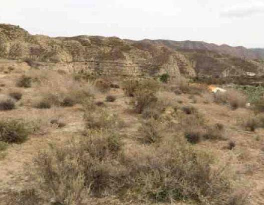 Venta de terrenos en Alsodux, Almería,