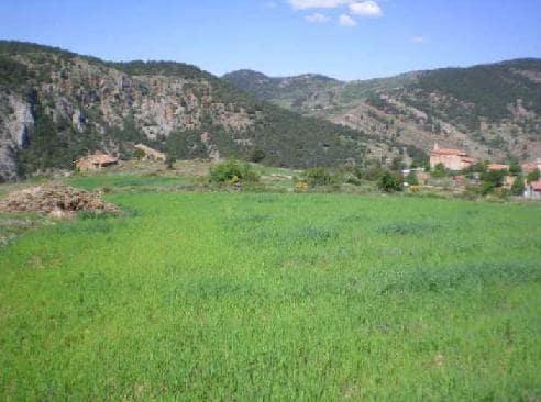 Venta de terrenos en Linares de Mora,