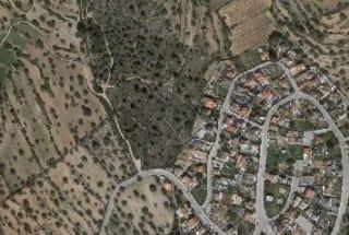 Foto 7 Calle Sur, 10, Bajo Parcela 116, 43893, Altafulla (Tarragona)