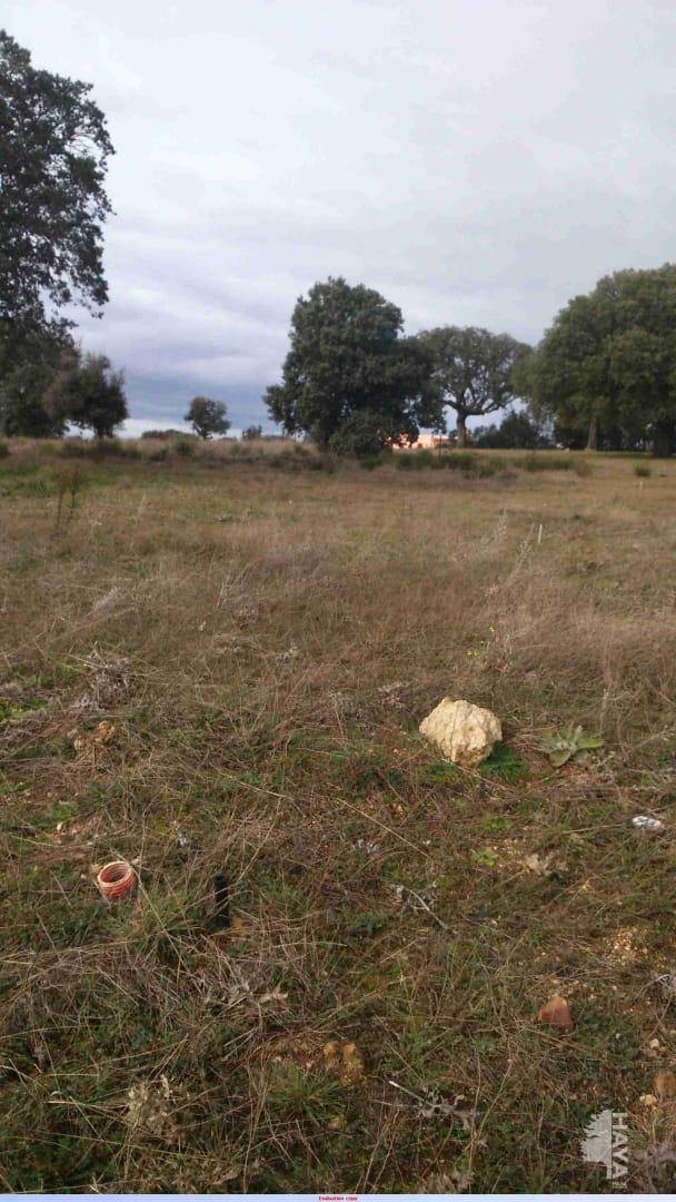Venta de terrenos en Villamayor,