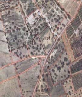 Foto 3 Lugar Partida Les Crevetes, Sn, Bajo, 12589, Càlig (Castellón)