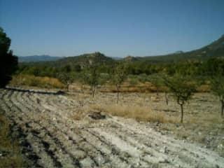 Foto 3 Lugar Paraje Culebrina, .1, Bajo, 30800, Lorca (Murcia)