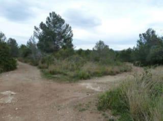 Foto 2 Calle Sur, 10, Bajo Parcela 62, 43893, Altafulla (Tarragona)