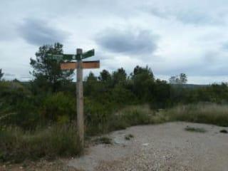 Foto 4 Calle Sur, 10, Bajo Parcela 62, 43893, Altafulla (Tarragona)