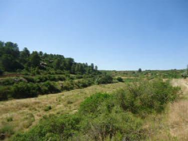 Venta de terrenos en Valdealgorfa,