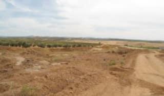 Foto 12 Lugar Paraje Cabeza Rubia, Sn, Bajo, 6207, Aceuchal (Badajoz)
