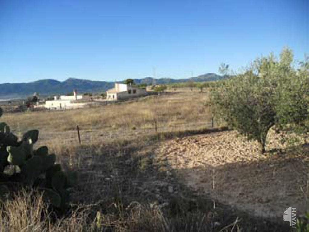 lands venta in ibi pinoses